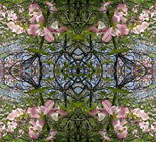 Kaleidoscope - Tree Series Blossom by Circe Lucas