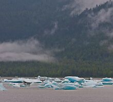 Ice Bergs at Medenhall Glacier, Alaska by JMChown