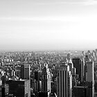 What a view, NYC by Jip v K