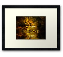 Mystery in a Forest Framed Print