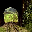 Colombian Tunnel  by Larry3
