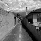 Northcote - West of the Cote by Rosestone
