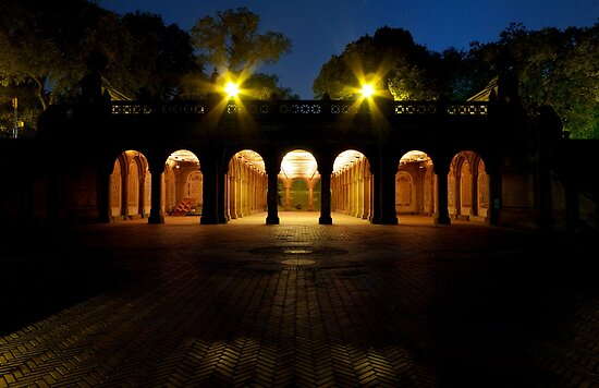 Bethesda Terrace Arcade, Central Park, New York by briceNYC