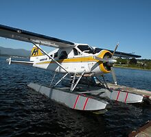 Float Plane by satsumagirl