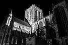 York Minster Lighting by Mat Robinson