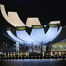 The Lotus by night by Adri  Padmos