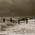 The English Sea  by Lou Wilson