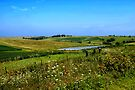 Iowa Farmland on a Summer Afternoon by MarjorieB