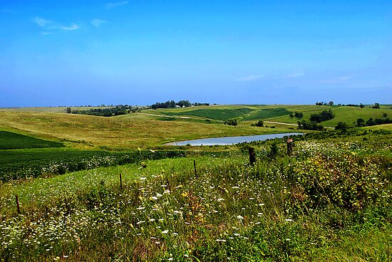 Iowa Farmland on a Summer Afternoon by MarjorieB