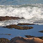 Tidepool Disturbance by Michele Conner