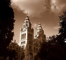 Natural History Museum, London by Chris Millar