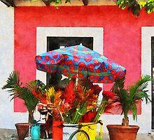 Flower Cart San Juan, Puerto Rico by Susan Savad