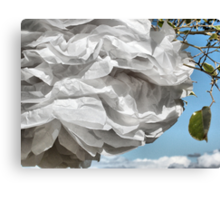 Paper White. Canvas Print