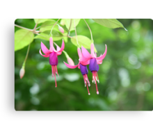 Summer Purple - Fuchsia Metal Print