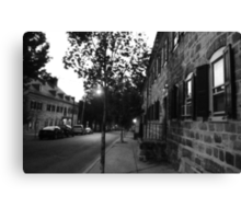 Brothers & Sisters Canvas Print