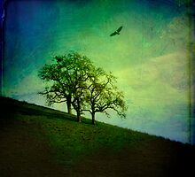 Oak Trees and Hawk by Lynn Starner