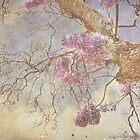 like a zen , Ohmmmmm by AnnaJameson