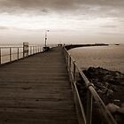 The Jetty by Susan Segal