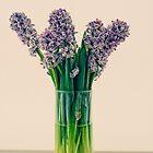 Beautiful scent. by Karen  Betts
