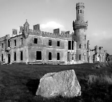 Ducketts Grove in County Carlow by Dave  Kennedy