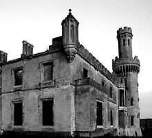 Ducketts Grove - Tullow, County Carlow by Dave  Kennedy
