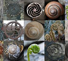 Spirals by cuilcreations