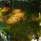 Reflections and Ripples in a Mountain Creek by Odille Esmonde-Morgan