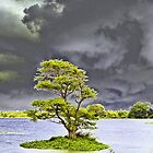 Storm (please see description) by Kanages Ramesh