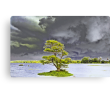 Storm (please see description) Canvas Print