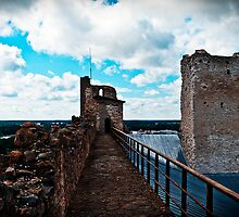 The Rakvere Castle by tutulele
