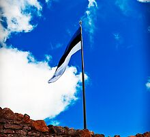 Estonian Flag by tutulele