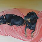 Rottweilers, Gertie and Willem on the sofa. by Belinda Galsworthy