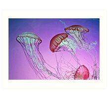 Dance of the Jellyfish Art Print