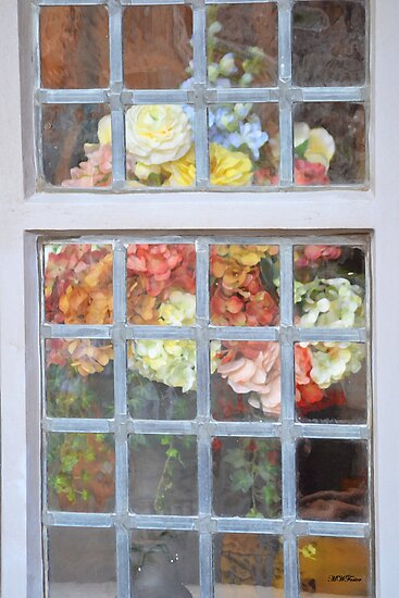 The Window by mwfoster