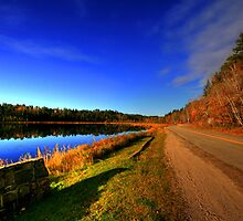 Autumnal Glory by Larry Trupp
