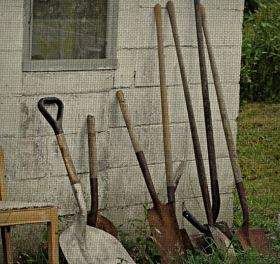 Need a Shovel by Sandy Dunn