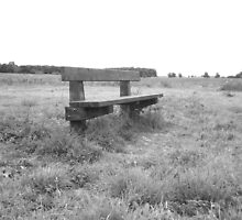 Lonely Bench by kincaidphotogra