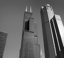 Willis Tower Photograph by Milena Ilieva