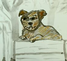 dog on pier by donnamalone