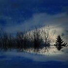 Horizon ! by Elfriede Fulda