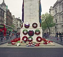 Remembrance Day - Wreaths at the Cenotaph by Jonathan Marsh