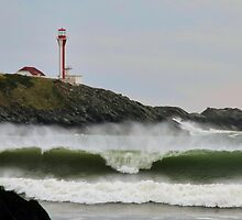 September Waves by Debbie  Roberts