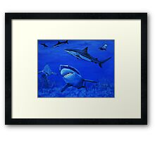 Life in The Sea  Framed Print