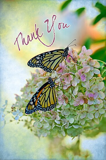 Mona Thank You Card by DiEtte Henderson