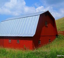 Red  Barn by Mechelep