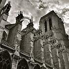 Notre Dame de Paris by Ommik