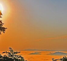 Tequila Sunrise in the Mountains by Ann Eldridge
