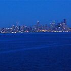 Seattle from the Puget Sound by laurafay