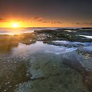 """It's the little things..."" ∞ Caloundra, QLD - Australia by Jason Asher"
