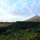 sunrise over senaru rice fields, lombok by nicole makarenco